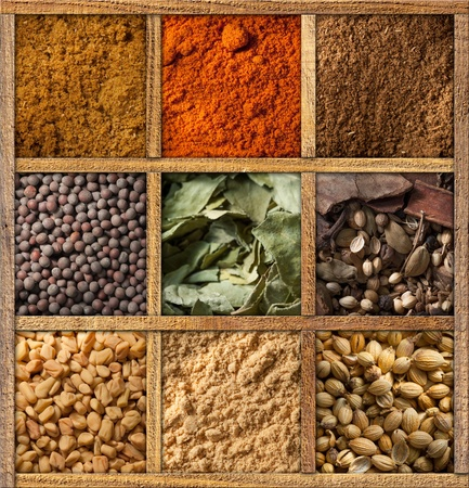 garam: Framed collection of spices Stock Photo