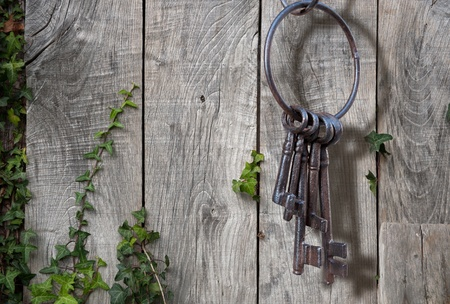 garden key: Old rusty key ring on rustic background Stock Photo