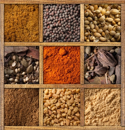 Framed collection of spices photo