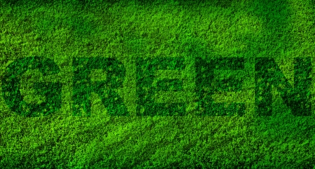 Lawn texture with letters in darker color writing the word green photo
