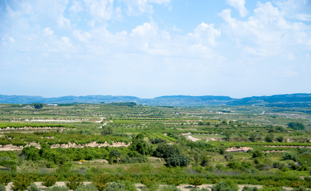 irrigated: Irrigated lands in Spain,