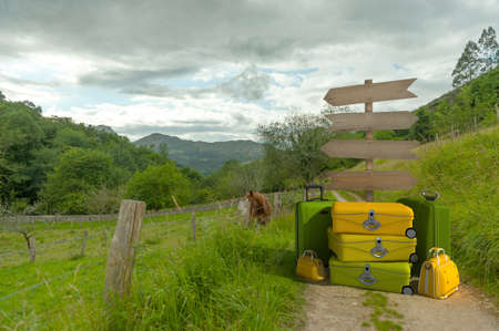 A pile of luggage with directional signs pointing everywhere in the middle of the countryside photo