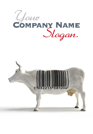 traceability: White cow with a huge bar code on its torso instead of cow skin patterns