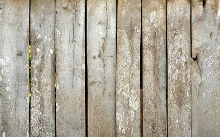 weather beaten: Old weather beaten wooden plank wall