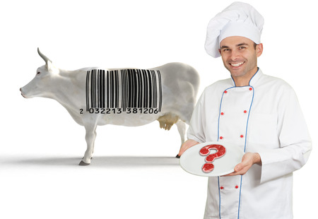 health questions:   Chef presenting a plate with a doubtful meat, with a cow with a barcode in the background  Stock Photo