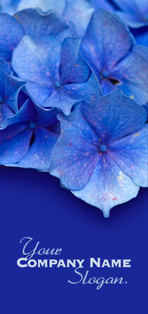 Blue flowers background Stock Photo - 26260688