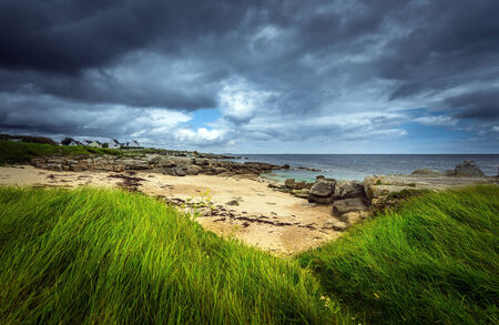 contrasting: Dramatic coastal landscape with contrasting gray sky and green grass