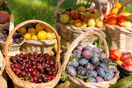 canastas con frutas: Cestas de fruta en el medio de una interpusieron