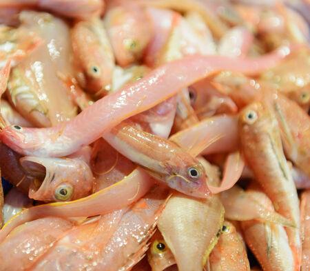 visboer: Vissen bij de visboer marktkraam
