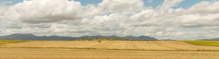 crop harvest: Fields in northern France