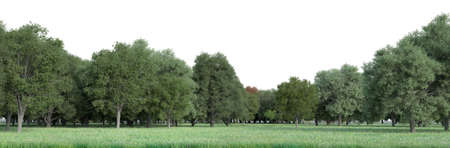 Realistic 3D rendering of a field with a lot of copy space in the sky for customization