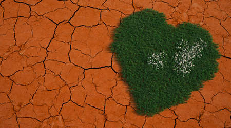 3D rendering of a heart with grass texture on a dried up soil in a drought Standard-Bild