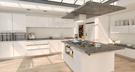 3D rendering of an industrial style domestic kitchen integrated in the house with glass roof on white Stockfoto