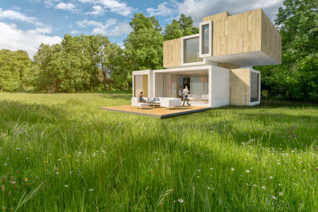 3D rendering of a big contemporary house in the countryside