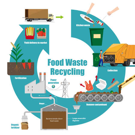 Illustrative diagram of food waste recycling process Illustration