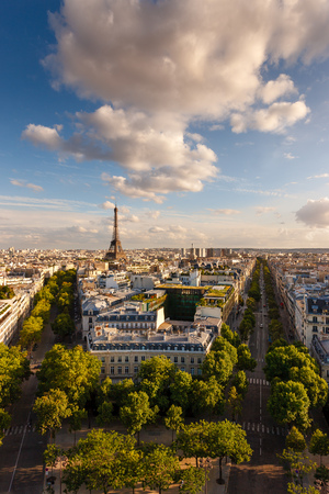 d'eiffel: Paris from above: the famous Eiffel Tower and tree-lined Paris avenues and their haussmanian buildings (avenue d