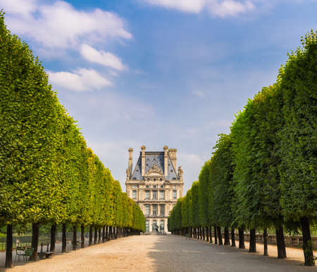 treelined: Summer morning view of Tuilleries garden in Paris, France. Tree-lined path leads to the south west facade of the Louvre Museum.