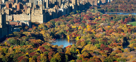 park: Central Park and Manhattan, Upper West Side with colorful Fall foliage. The aerial view includes buildings of Central Park West, The Lake and the Jacqueline Kennedy Onassis Reservoir. New York City.