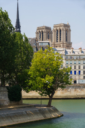 ile de la cite: Tip of Ile Saint Louis and towers and spire of Notre Dame de Paris Cathedral along the bank of the Seine River in summer. Ile de la Cite, Paris, France