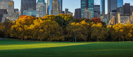 midtown manhattan: Central Park Sheep Meadow with full Autumn colors. Midtown Manhattan skyscrapers in early morning light. New York City Stock Photo