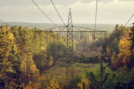 High-voltage powerlines and high-voltage pylons transporting  electric power in a lane through a beautiful autumnal forest in the evening light. Seen in Franconia / Bavaria in Germany in November.