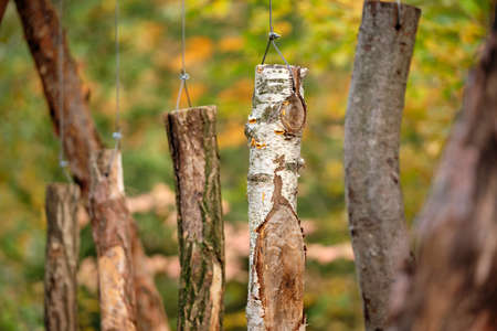 Birch wood and other types of wood are hanging on wires in the forest o that you can hear their tone when knocking at them. Seen in October in Germany
