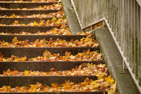 Closeup of a public staircase with metal railing in autumn covered with fallen slippery autumn leaves. Seen in Germany in October.