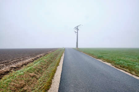Countryside road with  power pole to nowhere -  narow street with diminishing perspektive leading into the fog. Seen in Germany near Oedenberg, Bavaria in October. Banque d'images