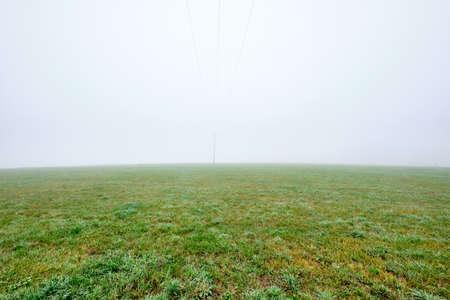 View into nowhere - autumn landscape on a pasture on a foggy morning with nearly nothing to see but the green grass, the horizon and the green fog. Seen in October in Germany, Bavaria Archivio Fotografico