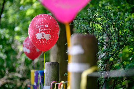 Colorful red and pink balloons with Happy Birthday written on it fixed on wooden poles of a fence in front of green springtime trees