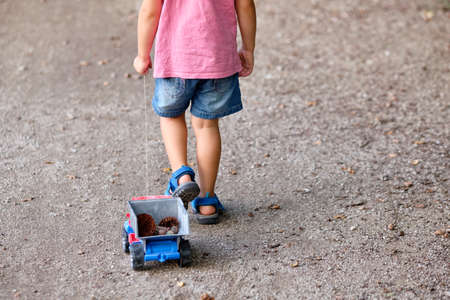 Rear view of the lower section of a 3-4 year old child in summer clothing on a gravel footpath  pulling a toy truck with cones in it Banque d'images