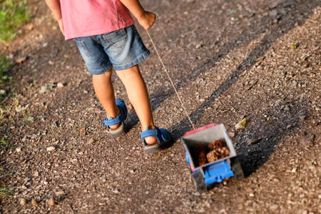 Rear view of the lower section of a 3-4 year old child in summer clothing on a gravel footpath  pulling a toy truck in the evening light