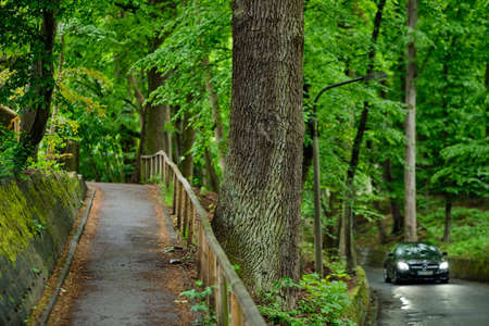 Nuremberg, Germany - May 16, 2019: A Mercedes Benz car with lights on is driving beside a footpath in a beautiful narrow wet and old street with stone walls under a canopy of beautiful green springtime trees 에디토리얼