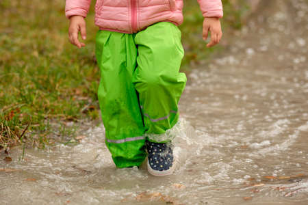 Front view of low section of a child girl in green waterproof pants and rubber boots walking through a huge rain puddle in the forest on a rainy autumn day in October in Germany