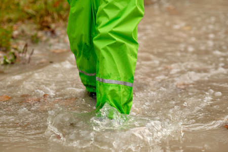 Low section of a child girl in green waterproof pants and rubber boots walking through a huge rain puddle in the forest on a rainy autumn day in October in Germany