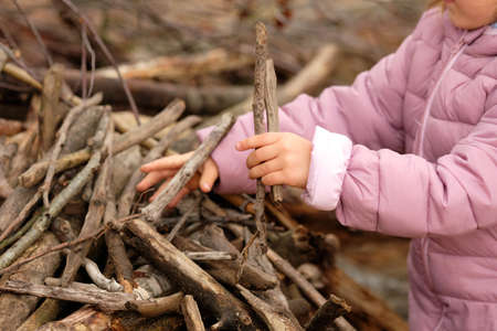 Mid section of a 4 year old child girl in purple warm clothing building something with wooden sticks in the autumn forest.
