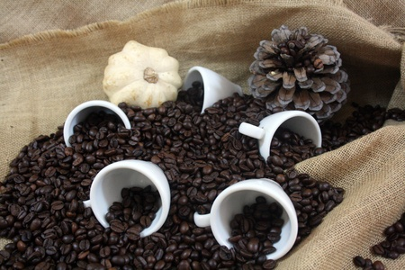 A lot of coffee ready to be ground Stock Photo - 13184897