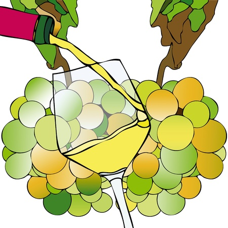 hangover: Grapes and White Wine Illustration