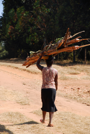 An African woman while carrying a load of wood - Tanzania photo