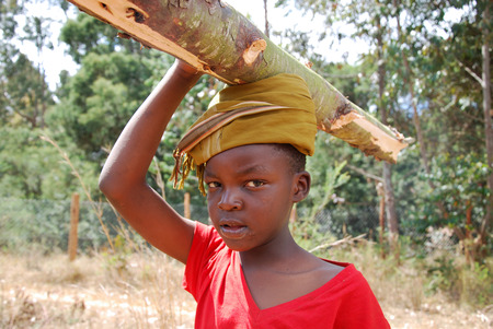 african solidarity: August 2014-Pomerini-Tanzania-Africa-African children to work carrying logs of wood on Their Heads in the African way, for cooking and heating-Often in Africa are the kids to do the hardest work