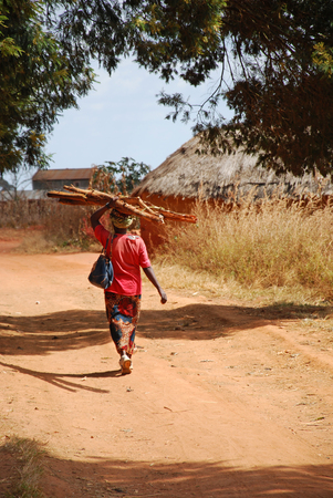 August 2014-Pomerini-Tanzania-Africa-An African woman while carrying on their heads, in the custom of Africa, a bundle of firewood for heating or cooking, in the background the village of Pomerini photo