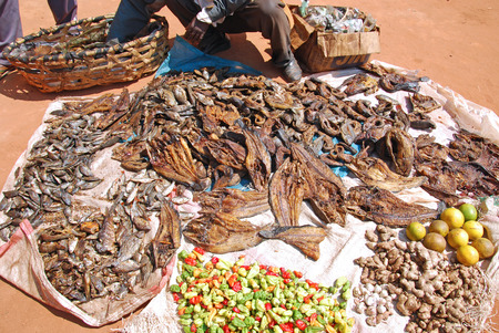 The market across the street from Village of Pomerini - The seller of dried fish - Tanzania - Africa
