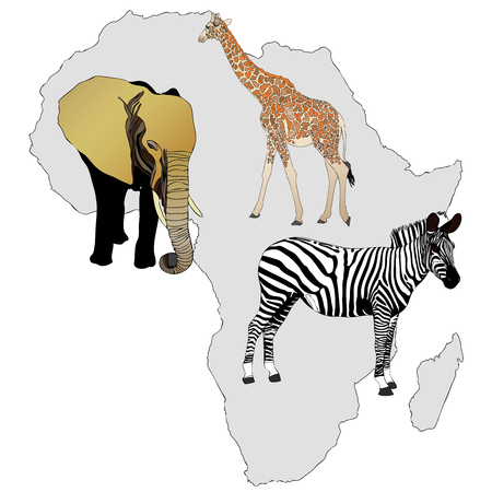 best known: The Africa and its animals - illustration representing the best known African animals