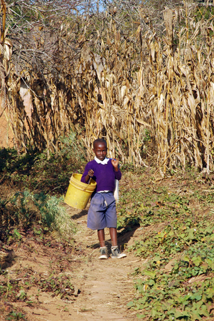 redemption: August 5, 2014, Village of Pomerini, Tanzania, Africa - An unidentified African child returns from school through the fields of the countryside of the Village of Pomerini bringing a lot with books and a bucket for water for drinking and cooking