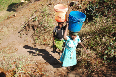 indigence: August 8, 2014, Mountain of Kilolo, Tanzania, Africa-Two unidentified girls as they climb the difficult ascent  from the river with in head two buckets full of water, a task that mostly only children perform Editorial