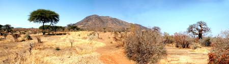 La sabana de Tanzania en África - Información general sobre la sabana africana en Tanzania