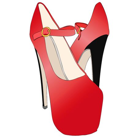 Beautiful very sexy womens shoes with very high heels