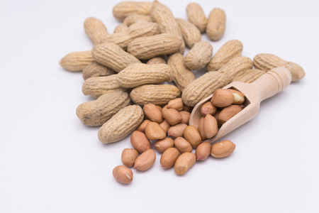 earthnut: Peanut in Gunny Bag on white background