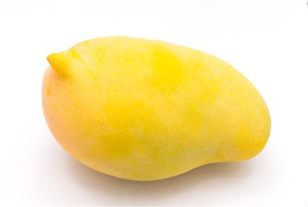 rad: ripe golden mangoes on white background,Rad mango