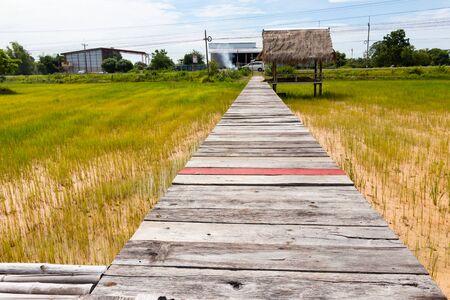 Wooden bridge walkway along concept for go to target